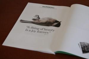 British Journal of Photography nature bird beauty