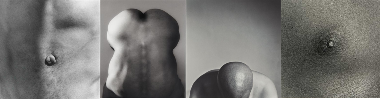 Robert Mapplethorpe bodies photography close up nipple belly button