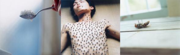 Rinko Kawauchi  Utatane japanese photography art